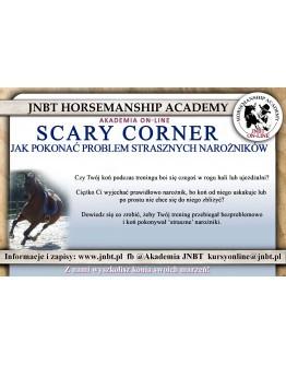 'Scary corner' – jak pokonać problem strasznych narożników?