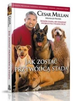 Cesar Millan Jak zostać przywódcą stada