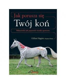 Gillian Higgins, Stephanie Martin Jak porusza się Twój koń