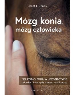 Mózg konia, mózg człowieka. Neurobiologia w jeździectwie